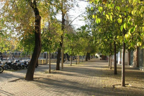 La Geometría de las aceras, Alameda de Hércules, Sevilla
